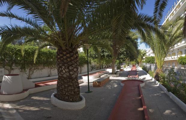 фотографии Tropical изображение №4