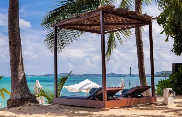 фотографии Peace Resort Bungalow изображение №20