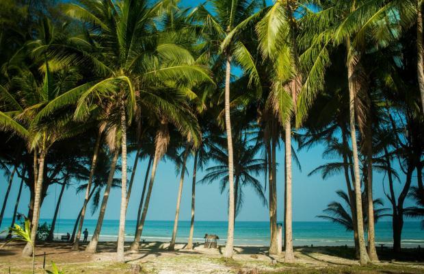 фотографии Chumphon Cabana Resort & Diving Center изображение №8