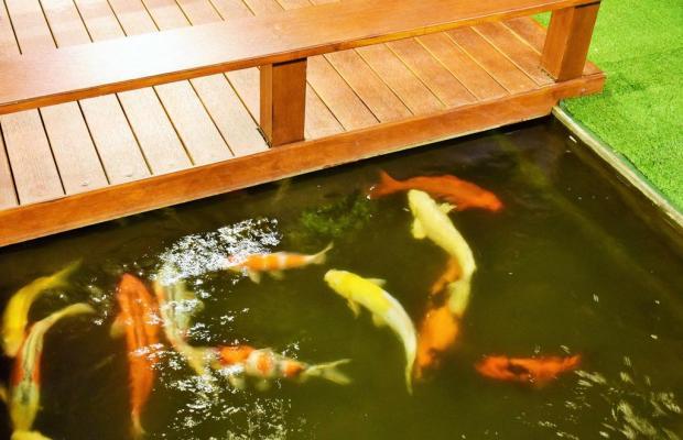 фото Baan Kata Maytha Hotel изображение №10