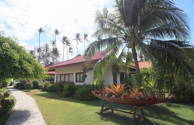 фотографии отеля Viva Vacation Resort изображение №15