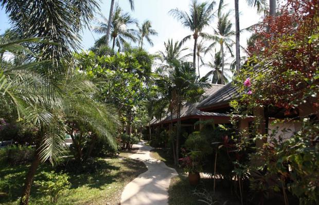 фотографии отеля Koh Samui Resort изображение №67