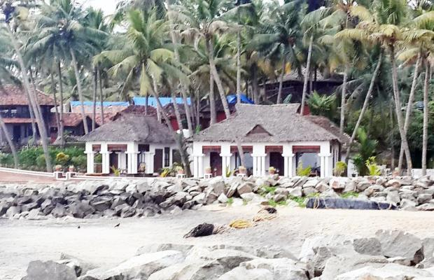 фото Palm Tree Bungalow изображение №34