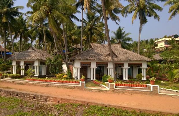 фото Palm Tree Bungalow изображение №14