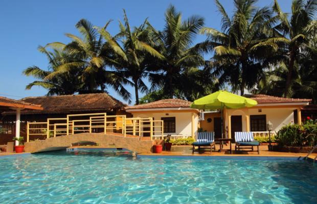 фотографии отеля Alcove Resorts изображение №3