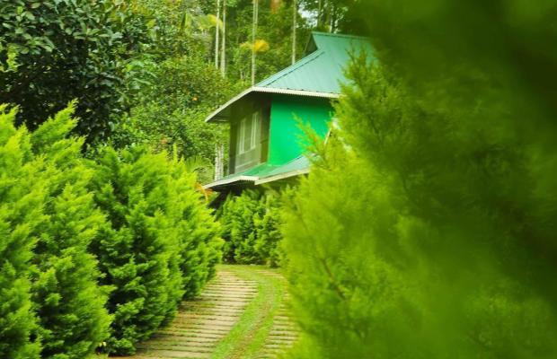 фотографии отеля Emarald Wyte Mist изображение №3