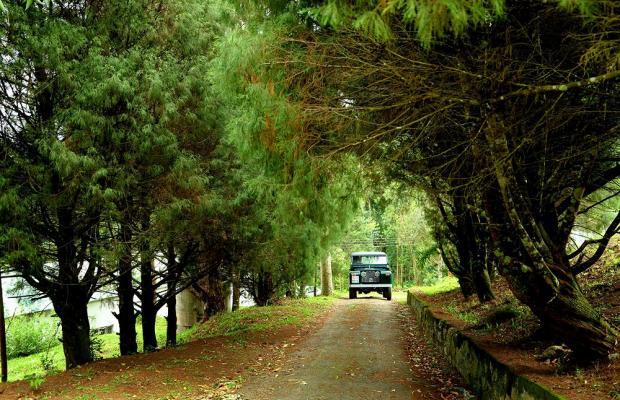 фото Green Jungle Holiday Resort изображение №22