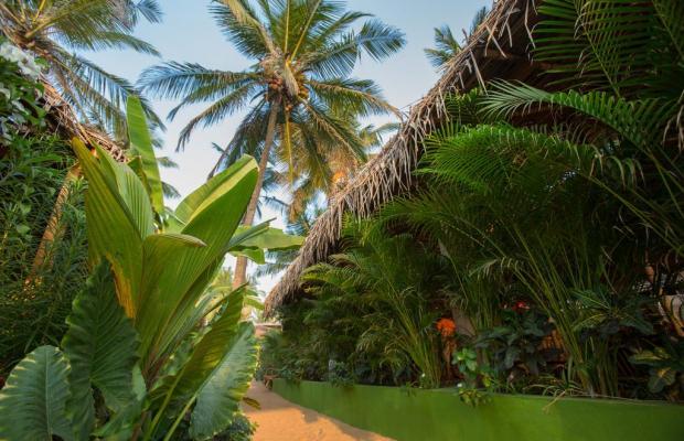 фото отеля Rama Resort - Agonda Beach изображение №5