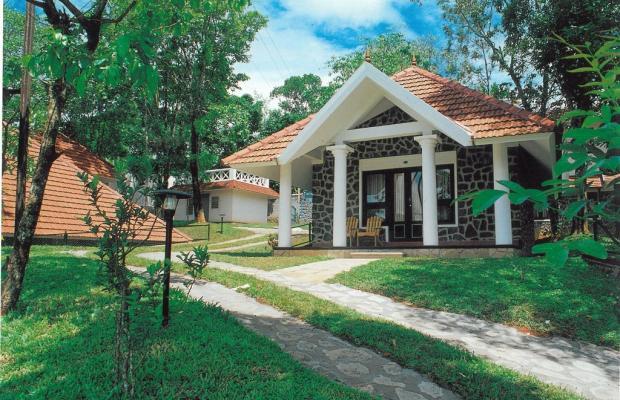 фото отеля Treetop изображение №1