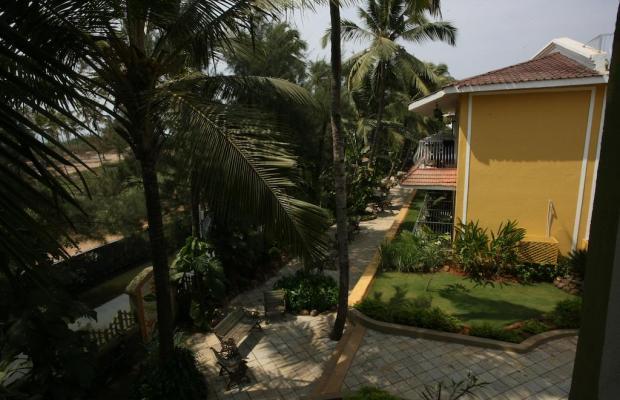 фото Acacia Palms Resort изображение №22