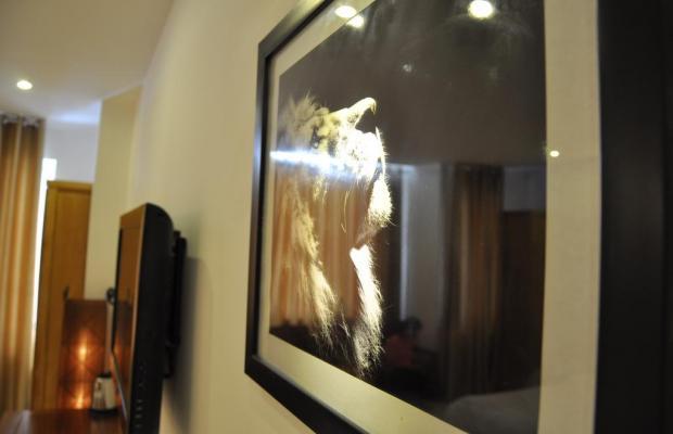 фото отеля White Lion изображение №5