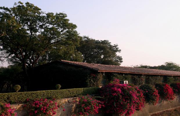 фотографии Shikarbadi изображение №24