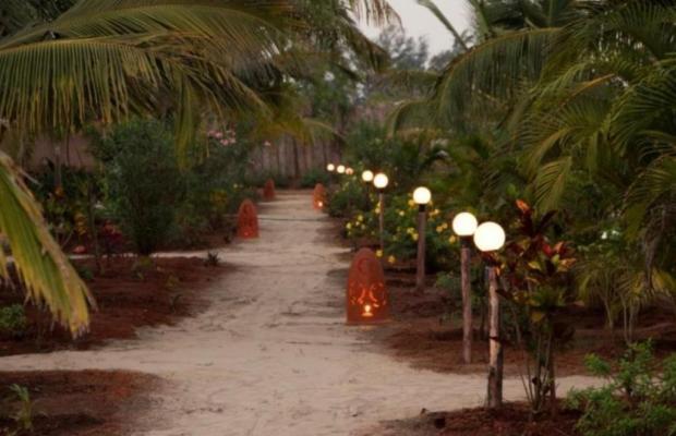 фотографии отеля Pirache Village Eco Resorts изображение №3