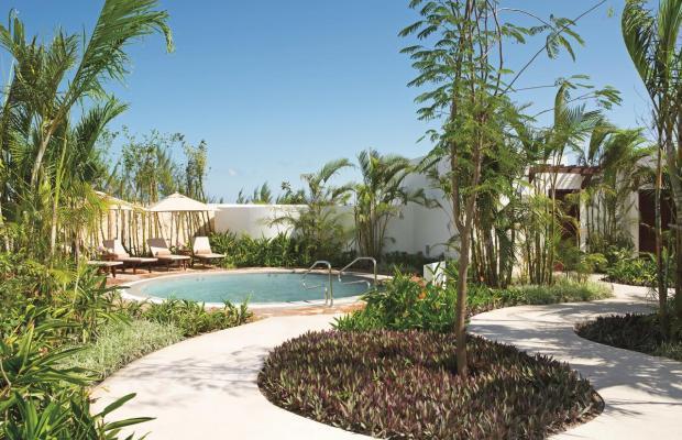 фотографии Secrets Playa Mujeres Golf & Spa Resort изображение №16