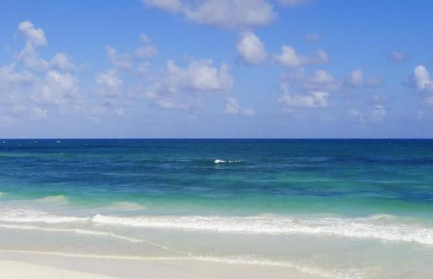 фото Ocean Coral & Turquesa изображение №18