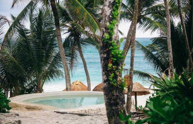 фотографии отеля Papaya playa изображение №23