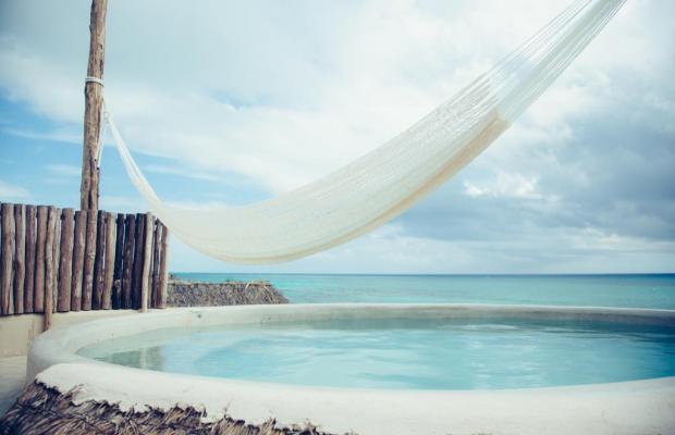 фотографии отеля Papaya playa изображение №3