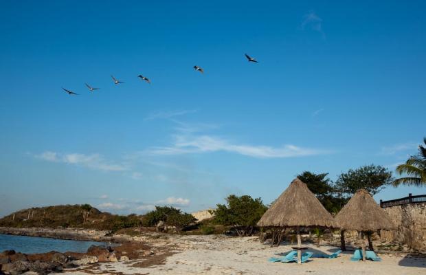 фотографии отеля Tucan Siho Playa изображение №11