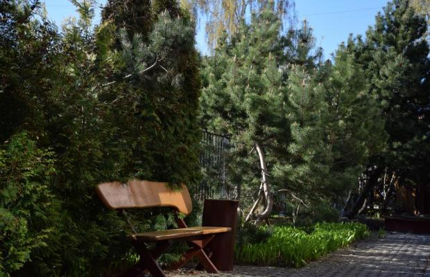 фотографии Ambra Villa (ex. Roko Vila) изображение №4