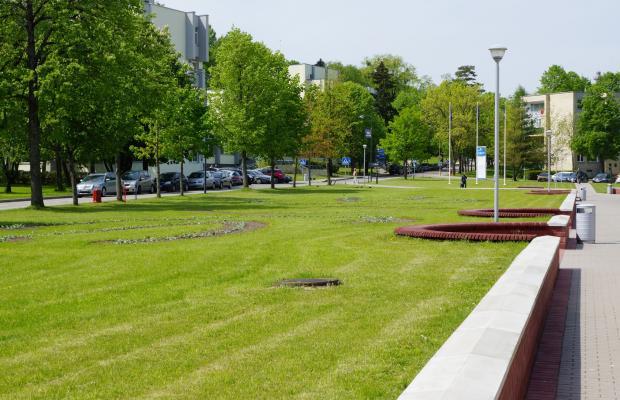фото Versme изображение №18
