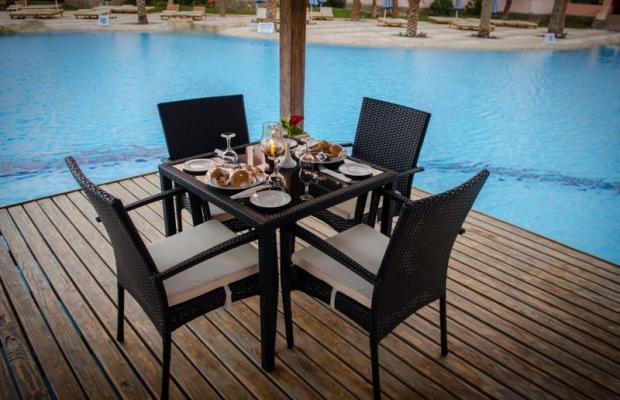 фотографии отеля Zahabia Hotel & Beach Resort изображение №43