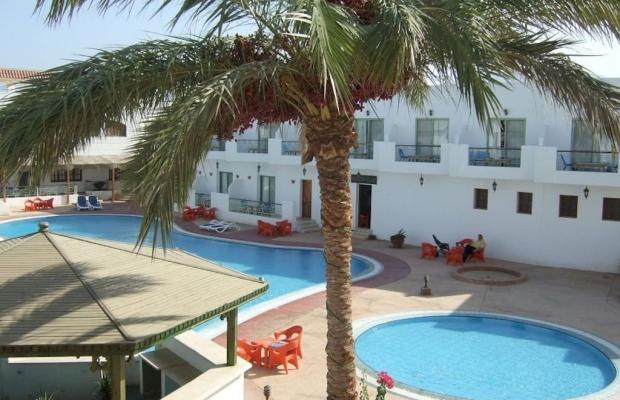 фотографии отеля Ganet Sinai Resort изображение №15