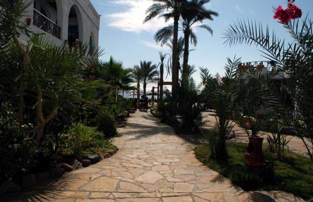 фото Hotel Planet Oasis изображение №30