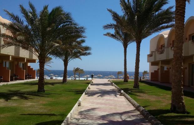 фотографии отеля The Three Corners Sea Beach Resort (ex. Triton Sea Beach Resort; Holiday Beach Resort Marsa Alam) изображение №19