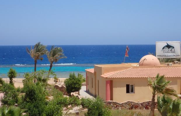 фото Wadi Lahmy Azur изображение №22