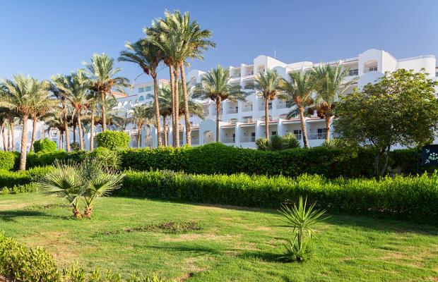 фотографии отеля Red Sea Hotels Siva Sharm Resort & Spa (ex. Savita Resort And Spa; La Vita Resort) изображение №11