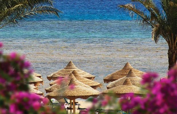 фотографии отеля Baron Resort изображение №31