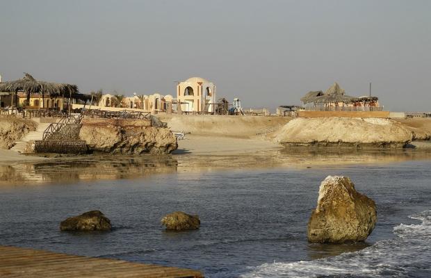 фото Zabargad Beach Resort изображение №26