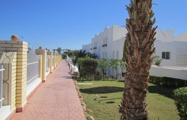 фотографии отеля Desert View Resort изображение №11