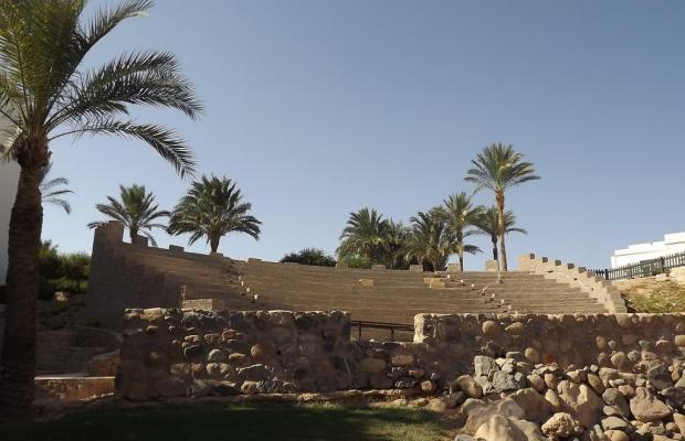 фото Sharm Resort (ex. Crowne Plaza Resort) изображение №10