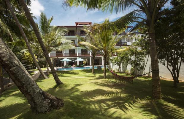 фотографии Rockside Beach Resort изображение №12