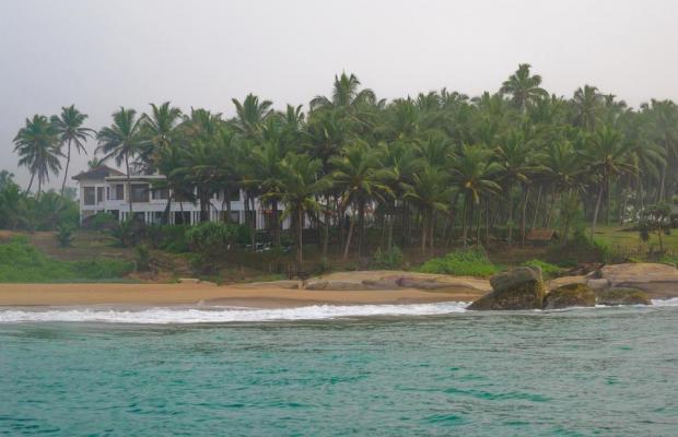 фотографии Turtle Bay изображение №12