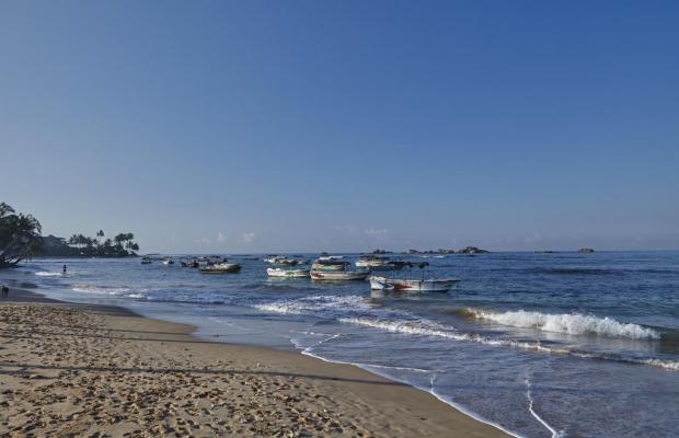 фотографии Coral Sands изображение №24