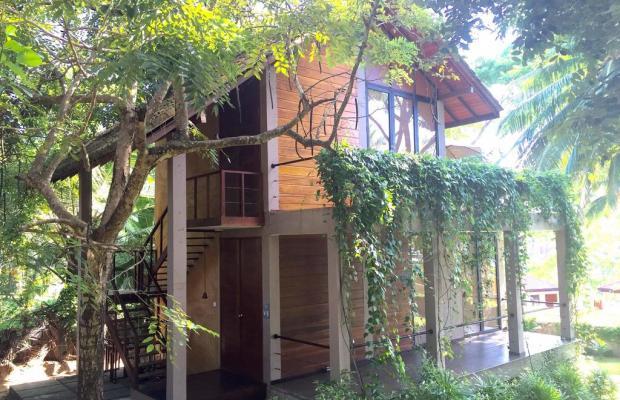 фотографии Palm Paradise Cabanas изображение №8