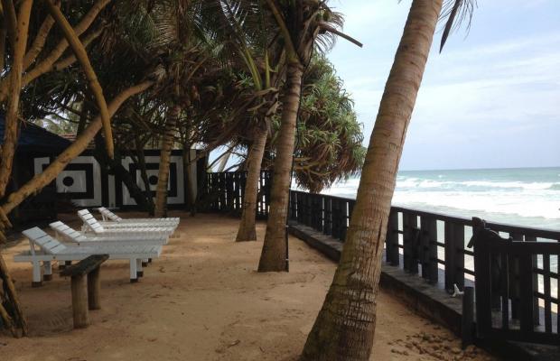 фотографии отеля Dalawella Beach Resort изображение №3