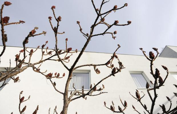 фото Boutiquehotel Hein изображение №46