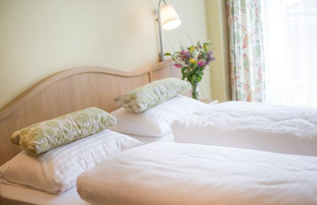 фотографии отеля Gruener Baum Hotel изображение №7