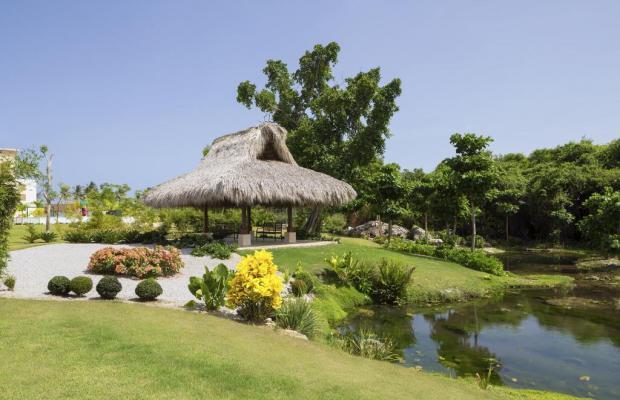 фотографии отеля The Westin Puntacana Resort & Club (ex. The Puntacana Hotel) изображение №83