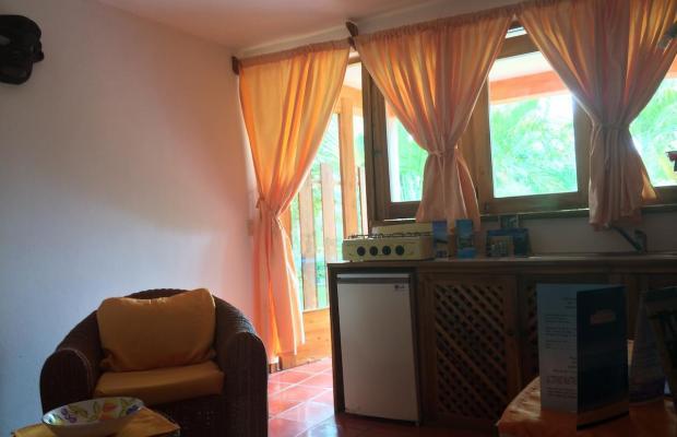 фотографии Residencia del Paseo изображение №28