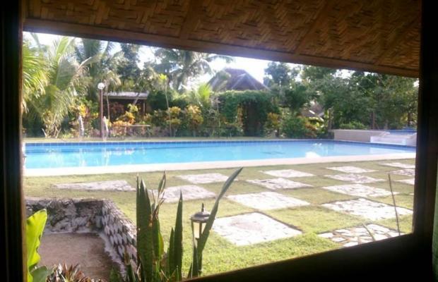 фотографии отеля Panglao Kalikasan Dive Resort изображение №23