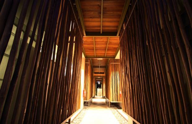 фотографии Belum Rainforest Resort изображение №24