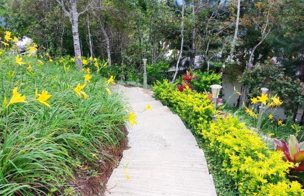фотографии Celyn Resort Kinabalu изображение №8