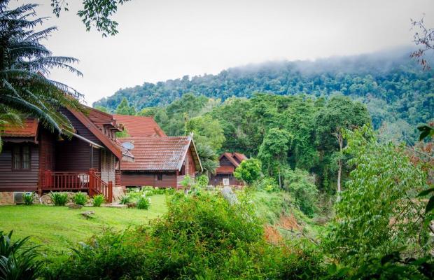 фотографии отеля Mutiara Taman Negara Resort изображение №7