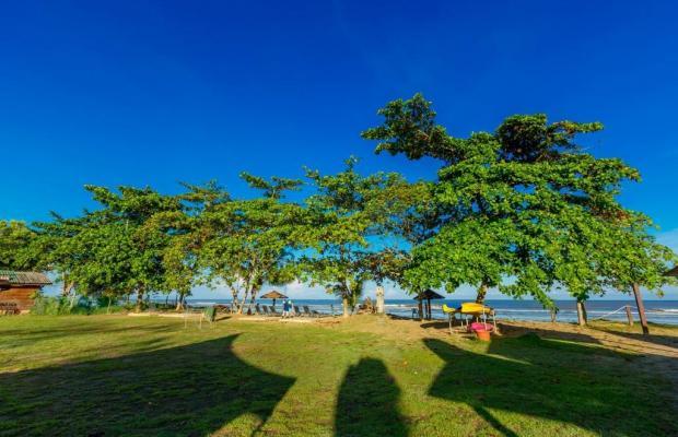 фотографии Beringgis Beach изображение №4