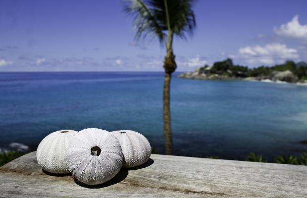 фото отеля Carana Beach Hotel изображение №9