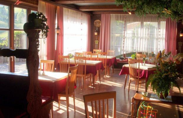 фотографии Gasthof Pension Alt Kirchheim изображение №28